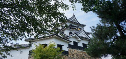 hikonejyo